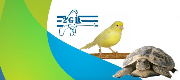 2gr-logo